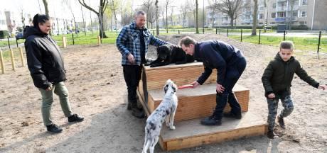 Hondenspeelplek in Oosterheide is 'mooier dan die bij de moskee'