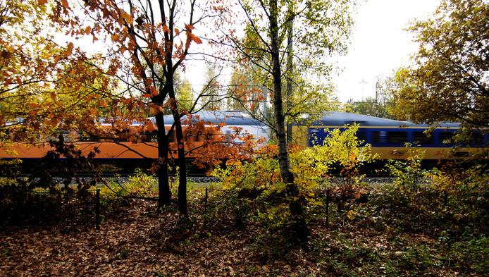 Volgend jaar moet de helft van de treinen al op groene stroom rijden.