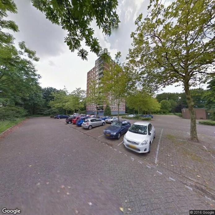 Zonnedauw in Apeldoorn. Foto; Google Streetveiw