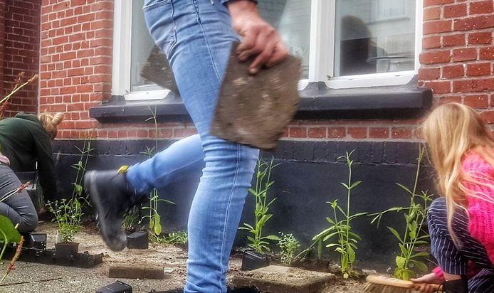 In verschillende straten in Enschede hebben bewoners als geveltuintjes aangelegd. Ook in Kampen, Deventer en Zwolle zijn er allerlei initiatieven van Groene Loper Overijssel