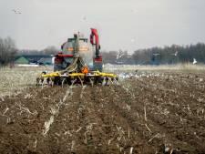 Meer of juist minder mestfabrieken in Brabant? 'Merkwaardig dat provincie nieuwe locaties zoekt'