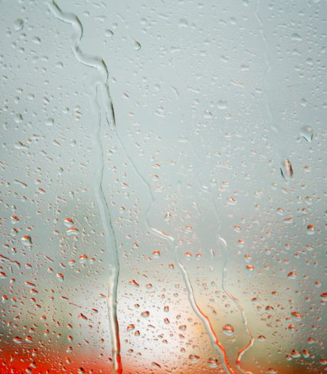 Nu pakt regen juist slecht uit voor Monkey Town in Waalwijk: 'Te nat voor buitenspeelparadijs'