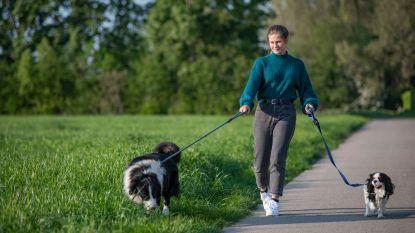 Toerisme Lokeren lanceert hondenwandeling 'In het spoor van je viervoeter'