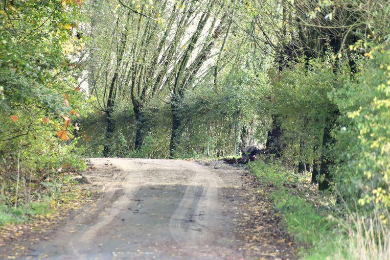 De 120 verdachte vaten werden gedumpt langs deze landelijke weg, een zijstraatje van de Kriekstraat in de Ieperse deelgemeente Voormezele.