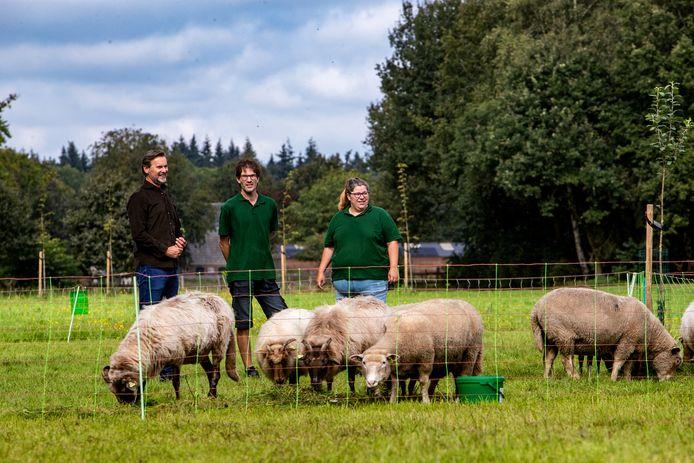 Klant Mark Stanlein (links) is tevreden met de schapenkudde die hij van herders Herbert Nijkamp en Janny de Vries huurt. De schapen grazen zijn land in Harfsen mooi kort en vormen een leuk uitzicht.