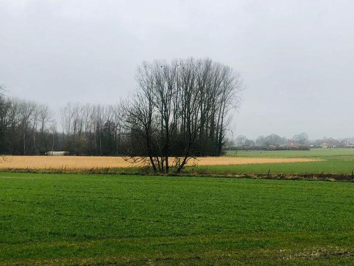 Glabbeek is dé fruitgemeente van Vlaams-Brabant