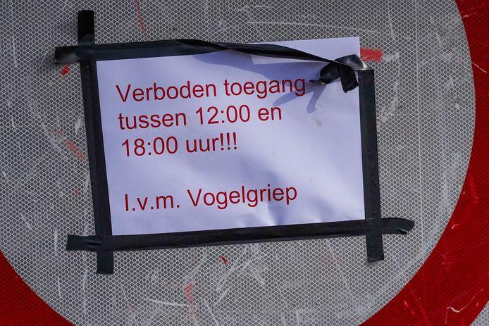 Vogelgriep Sint-Oedenrode.