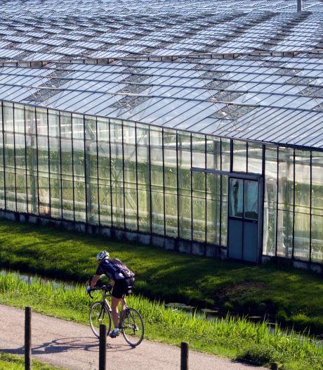 Glastuinbouw blij met recordbedrag voor duurzaam telen