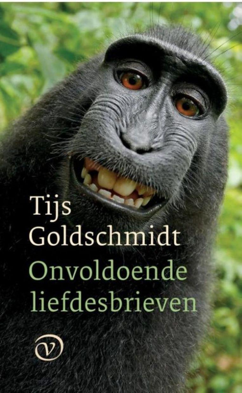 Tijs Goldschmidt: Onvoldoende liefdesbrieven Beeld