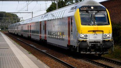 NMBS en HR Rail organiseren Job Day voor treinbegeleiders