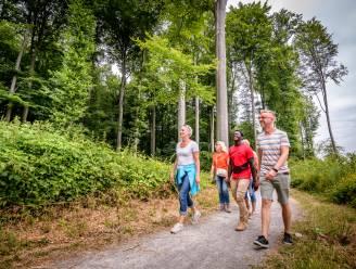 158 kilometer lange wandellus in het Hageland krijgt update met vernieuwde gids