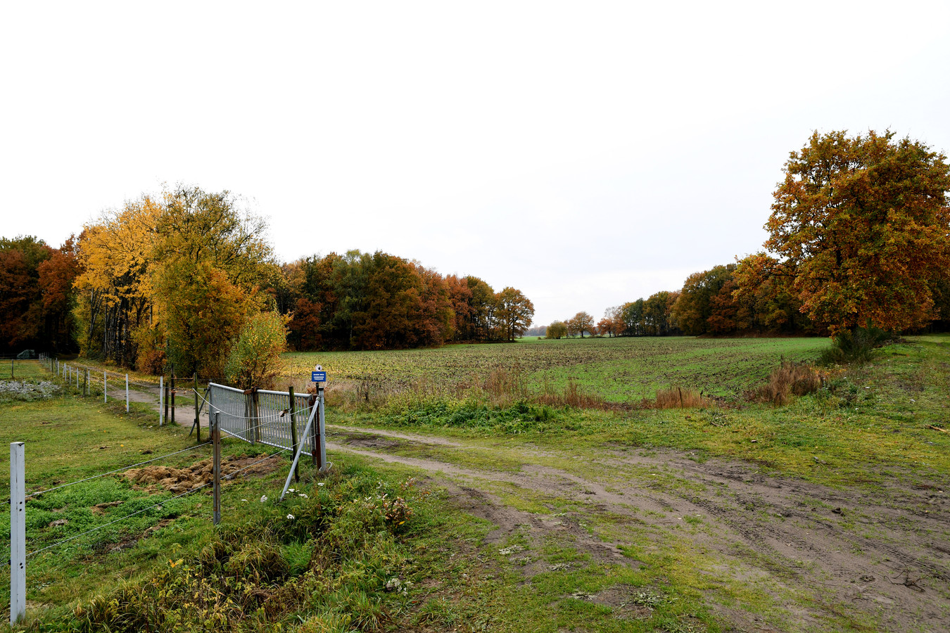 Natuurgebied ''t Blik richting Oosterhout.  Foto Pix4Profs/Jan Stads