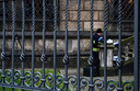 Een forensische speurder bezig met sporenonderzoek bij het museum in Dresden. De inbrekers forceerden er gistermorgen een tralierooster en sloegen een ruit in om binnen te komen.
