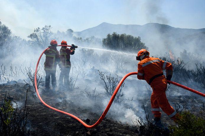 I vigili del fuoco cercano di contenere un incendio a Junfron.