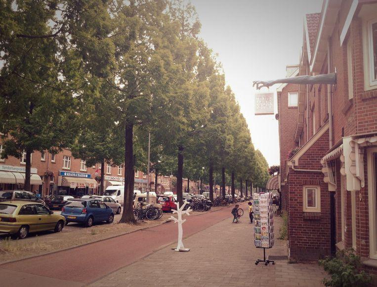 Ontdek de fijne winkeltjes in de Van der Pekstraat. Beeld -
