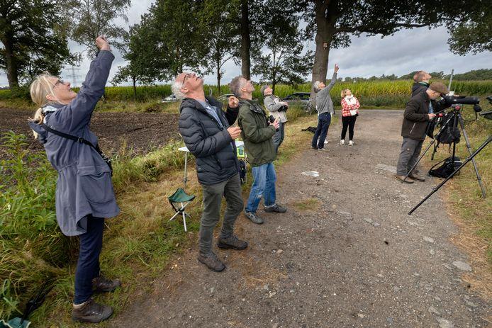 Trekvogeltelling door Vogelwerkgroep de Kempen.