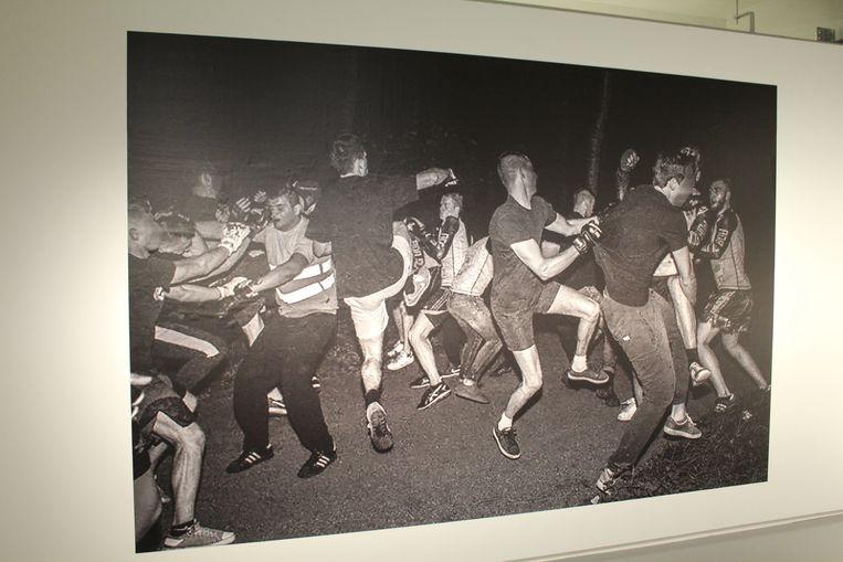 De foto-expo van Steveniers, 'Bosfights/ Leef vrij', was al te zien in FOMU Antwerpen en reist nog steeds rond. Beeld Jasper van der Schoot