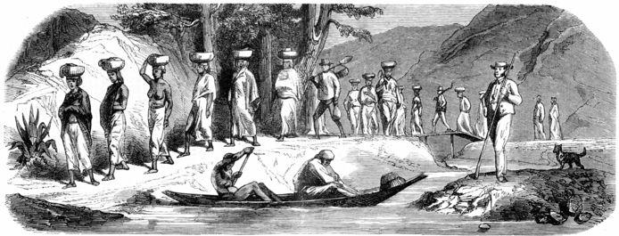Beeld van het werk van slaven op een koffieplantage in Suriname in de 19de eeuw.