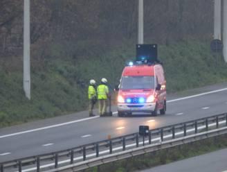 Lading mest in vrachtwagen vat vuur op E40