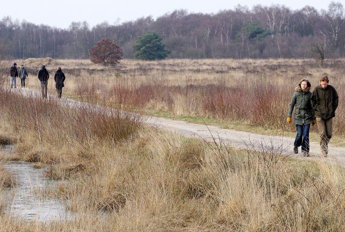Wandelen in natuurgebied Engbertsdijkvenen.