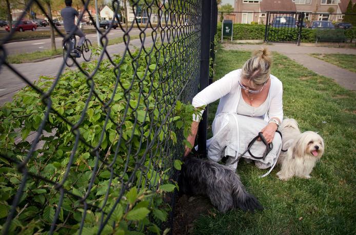 De hondenuitlaatplekken verdwijnen in Enschede.