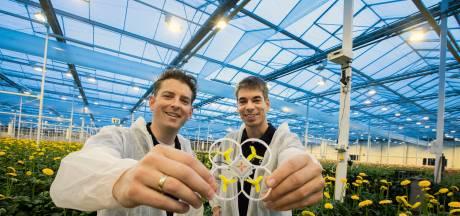 Pats! Sjoerd en Kevin ontwikkelen drone die afrekent met mot: 'Veel effectiever dan pesticiden'