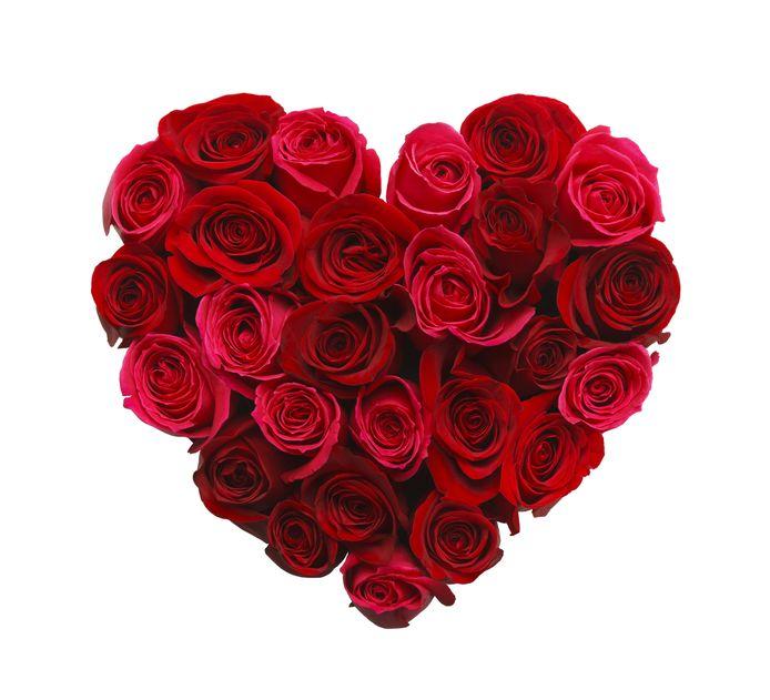 De contactadvertentie voor de BN'er op leeftijd verscheen voor het eerst aan de vooravond van Valentijnsdag.