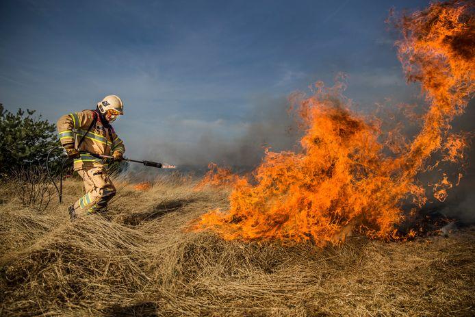 Hoog Buurlo - Gecontroleerd een heidebrand laten uitbranden.