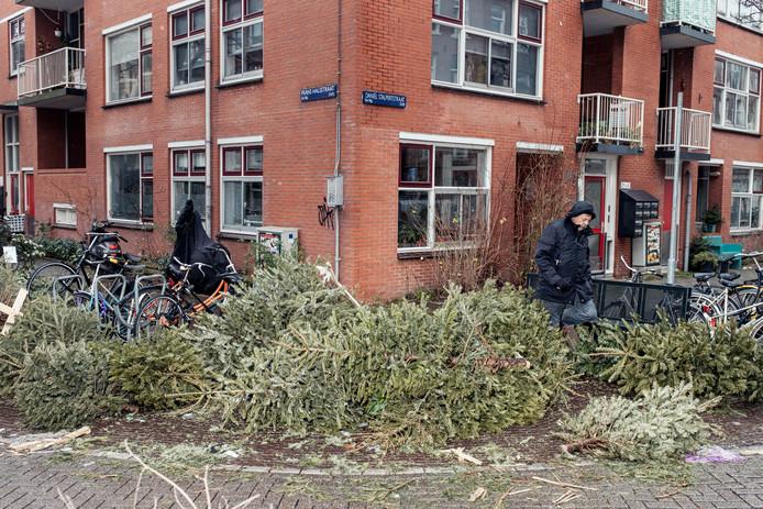 Kerstbomen in de Frans Halsstraat op de hoek van de Daniël Stalpertstraat.