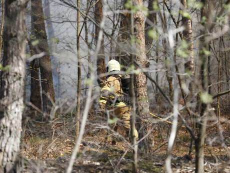 Grote heidebrand in natuurgebied Schijf