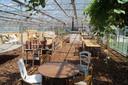 Ongeveer de helft van de zomerbar bevindt zich in een serre. Hangmatten, strobalen, lange tafels, lichtslingers en veel groen zorgen voor een speciale sfeer.