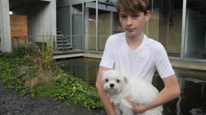 Broers redden Ralfke van agressieve herdershond