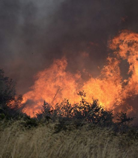 """Un incendie de forêt """"incontrôlable"""" menace des habitations près d'Athènes"""