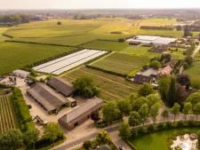 Gemeente Best koopt grond, aardbeienteler krijgt 3,5 miljoen euro