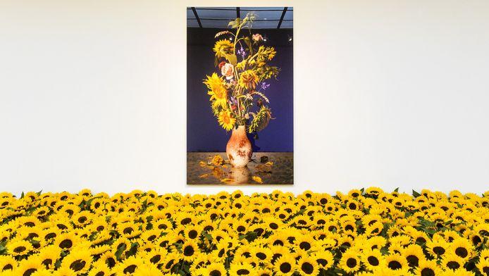 Zonnebloemen in het Museum Jan van der Togt. De bloemen verwijzen naar de rampplek in Oekraine waar vlucht MH17 op 17 juli 2014 neerstortte. Rondom de plek waren immense velden vol zonnebloemen.