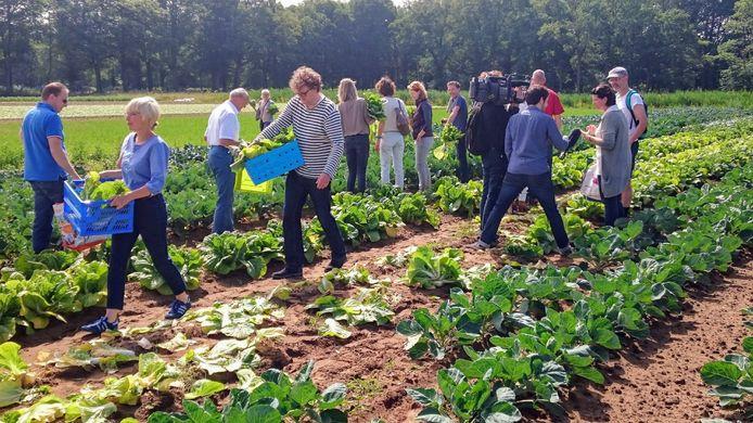 Collectief je eigen gezonde voedsel produceren. Dat is één van de principes achter Herenboeren.nl
