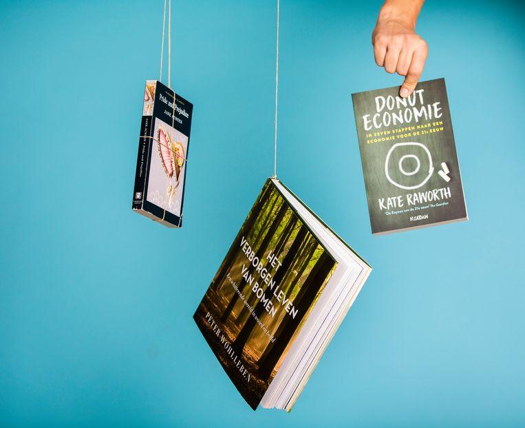 De boeken van Marianne Thieme. Beeld Freek van den Bergh