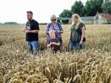 Op de trekker van het maisdoolhof naar oud-Hollandse spelletjes op Dag van de Boerderij in Schoondijke