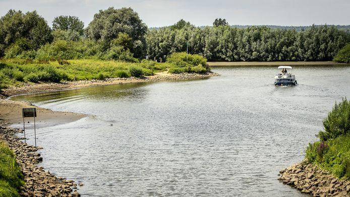 Rijkswaterstaat gaat in de uiterwaarden van de IJssel bomen kappen.