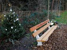 Woede en ongeloof bij nabestaanden verongelukte Maurits (18): herinneringsboom omgezaagd