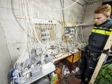 Fors minder wietkwekerijen ontdekt door de politie