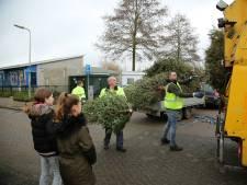 Zoveel kerstbomen zijn er opgehaald in Woerden, De Ronde Venen en Oudewater