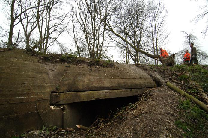 Eén van de bunkers op park Toorenvliedt in Middelburg