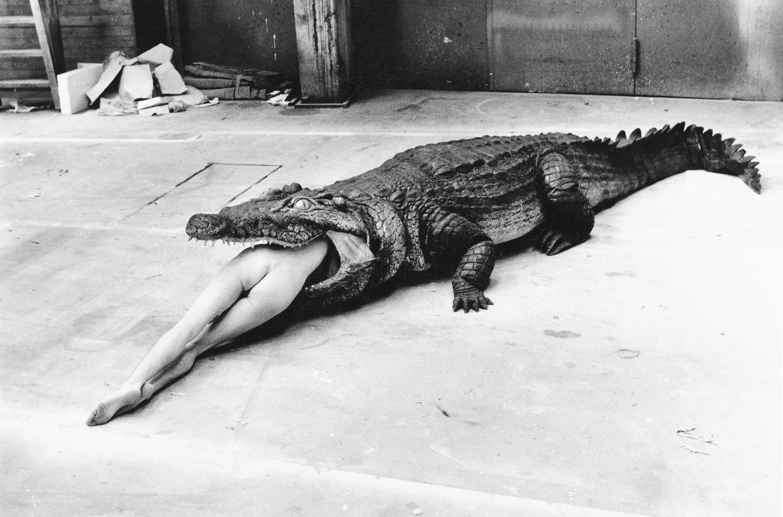 Crocodile Eating Ballerina, uit Pina Bausch' ballet Keusheitslegende, 1993. Beeld Filmstill