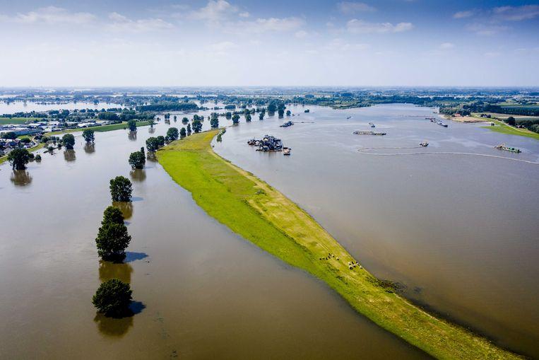 Ondergelopen uiterwaarden met links de Maas. Omdat de rivier in dit gebied veel ruimte krijgt, komt het water minder hoog en zijn er geen grote problemen. Beeld ANP