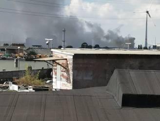 Brandende houtstapel in Antwerpse haven veroorzaakt grote rookpluim