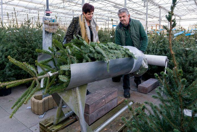André van Grunsven van tuincentrum Drunen pakt een nordmann in voor Rianne Kolmans.