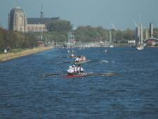 Roeiteam van Scaldis wint Abeelenrace