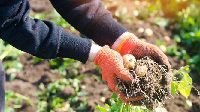 Digitale gespreksavond laat lokale boeren aan het woord