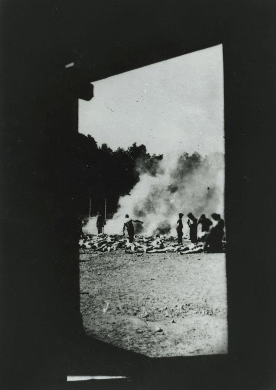 null Beeld Auschwitz museum/afdrukken: particuliere collectie Robert Jan van Pelt.